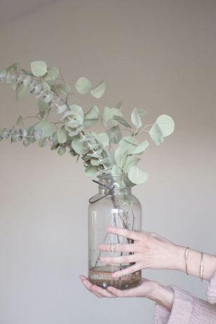 Inspiration - Indendørs planter - Simple Eaucalyptus www.frkgreve.dk