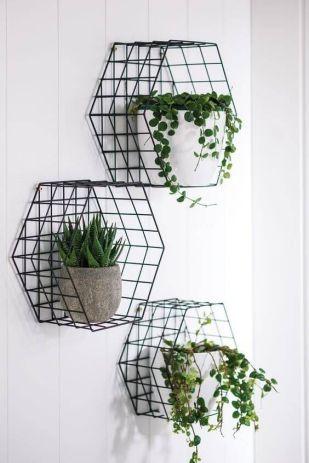 Inspiration - Indendørs planter - Wall decor plants www.frkgreve.dk