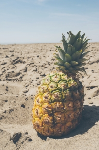 Goodbye Summer - pineapple